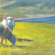 Painting Of Sheep On A Cliff Top Art Print