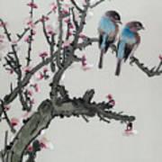 Pair Of Birds On A Cherry Branch Art Print