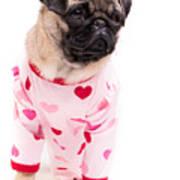 Pajama Party Art Print