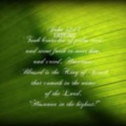 Palm Branch Art Print