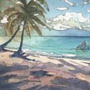 Palm Cove Art Print