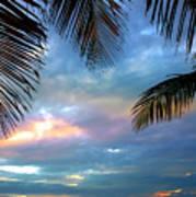Palm Curtains Art Print