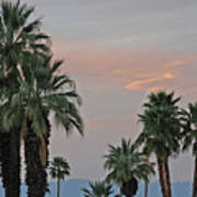 Palm Desert Sunset  Art Print