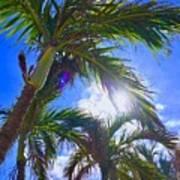 Palm Gazing Art Print