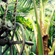 Palm House Pulley Art Print