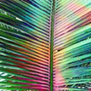 Palm Leaf Art Art Print