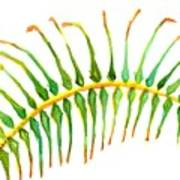 Palm Leaf Watercolor Art Print