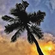 Palm On The Beach Art Print