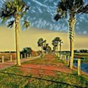 Palm Parkway Art Print
