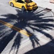 Palm Porsche Art Print