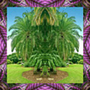 Palm Tree Ally Art Print by Bell And Todd