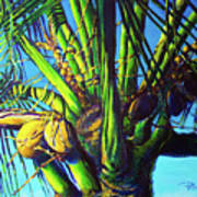 Palm Tree At Sunset Art Print