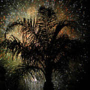Palm Tree Fireworks Art Print