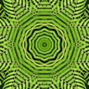 Palm Tree Kaleidoscope Abstract Art Print