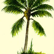 Palm Tree Number 1 Art Print