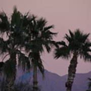 Palm Trees And Mountains At Sunset #1 Art Print