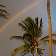 Palm Trees And Rainbow Art Print