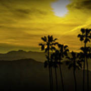 Palm Trees At Sunset With Mountains In California Art Print