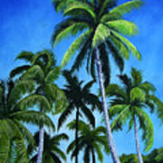 Palm Trees Under A Blue Sky Art Print