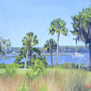 Palmetto Bluff Backyard Art Print
