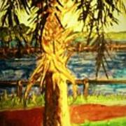 Palmetto Tree Art Print