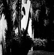 Palms And Arches Art Print