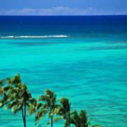 Palms And Ocean Art Print