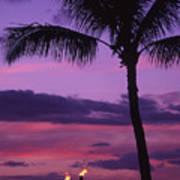 Palms And Tiki Torches Art Print