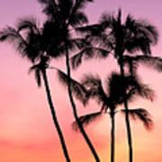 Palms At Sunset Art Print