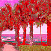 Palms In Red Art Print