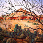 Palo Duro Canyon Art Print