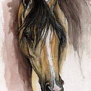 Palomino Arabian Horse Watercolor Portrait Art Print