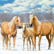 Palomino Horses In Winter Pasture Art Print by Crista Forest