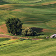 Palouse Farm 1 Art Print