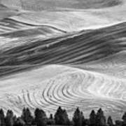 Palouse Field 2740 Art Print