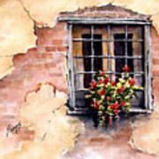Pampa Window Art Print