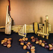 Pan Flutes And Buckeyes Art Print