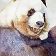 Panda Eating Art Print by Bonnie Rinier