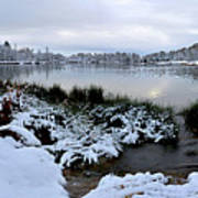 Panorama Of Winter Lake Art Print