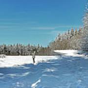 Panorama Of Winter Park Art Print