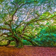 Panoramic Angel Oak Tree Charleston Sc Art Print