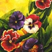Pansies Or Vuela Mis Pensamientos Art Print