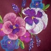 Pansy Grandeur Art Print
