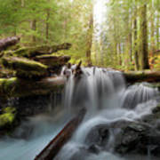 Panther Creek In Gifford Pinchot National Forest Art Print