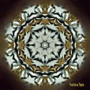 Panthera Tigris Kaleidoscope Art Print
