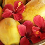 Papaya Fruit And Hibiscus Art Print