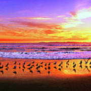 Paradise Found, Huntington Beach, California, Catalina Island Art Print