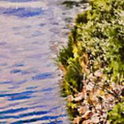 Paradise Lake Shore Art Print