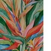 Paradise Memories  Art Print