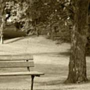Park Bench In A Park Art Print